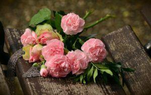 Flores completa e incompletas