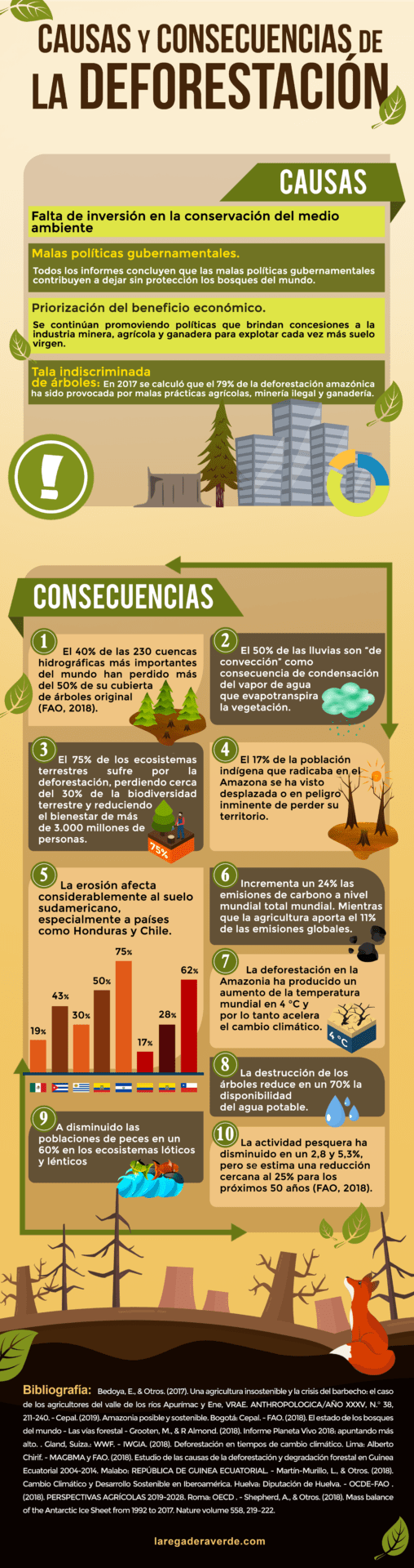 infografía deforestación 2